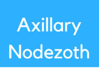 Medical Definition of Axillary Node