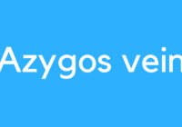 Medical Definition of Azygos Vein