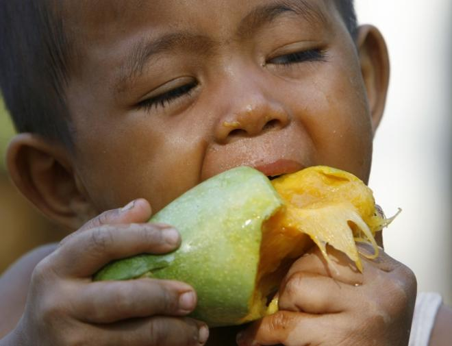 Fat-Busting Mango Peels May Be the Next Weapon against Obesity